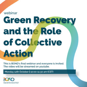 Green Recovery and the Role of Collective Action